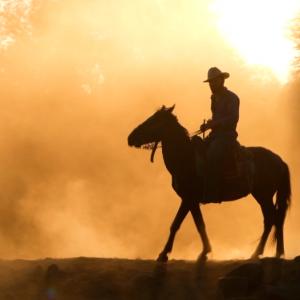 Western Book Trailer