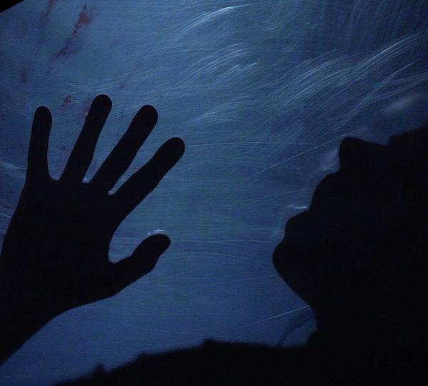 Affordable Book Trailer for Horror Novel